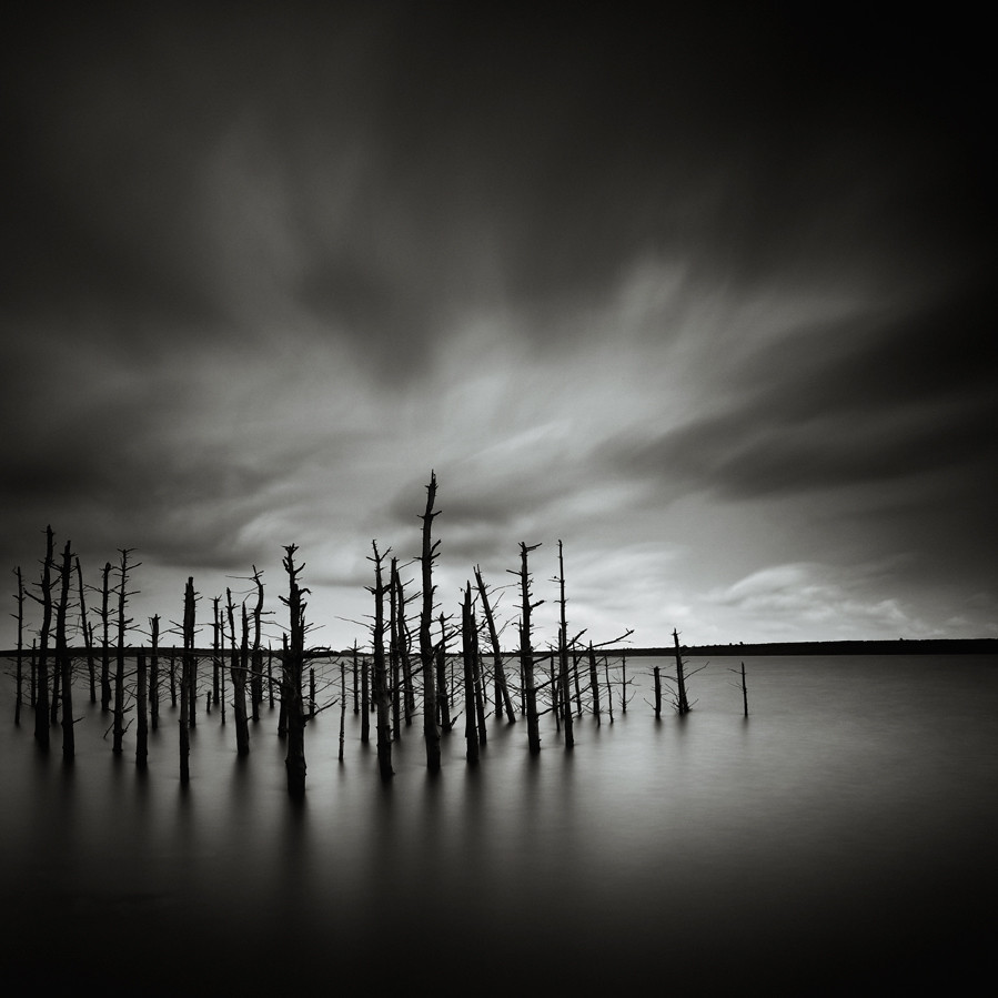 Dead Wood photo by Andy Brown (mrbuk1)