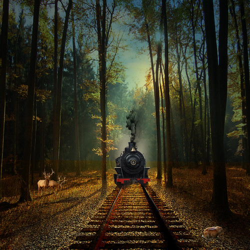 The train from coast to coast photo by jaci XIII