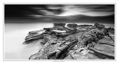Palm Beach Rock Shelf photo by Bruce_Hood