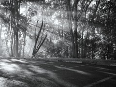sun rays across the park and parking lot photo by Love to draw2012