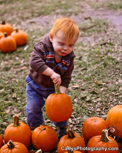 PUMPKIN PATCH - OCT 2012-34.jpg