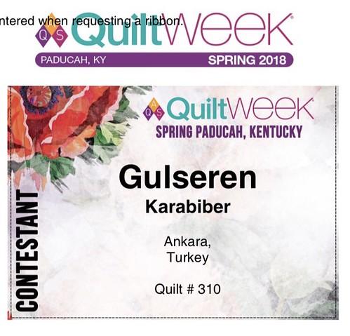 """<b>AQS Finalistlerimiz</b><div>Gulseren Karabiber """" Revival""""</div>"""