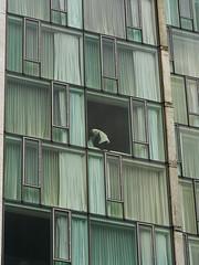Standard Hotel photo by blasaure