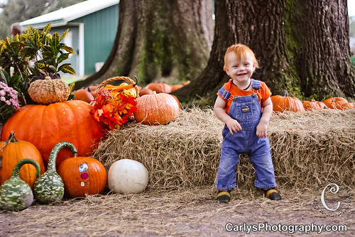 PUMPKIN PATCH - OCT 2012-7.jpg