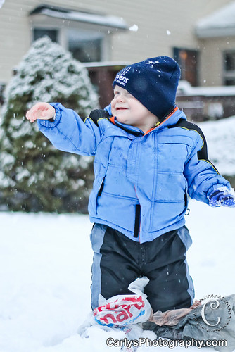 Kyton playing in the snow-4.jpg