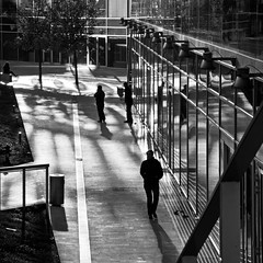 among shadows and reflections photo by montel7