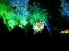 Poet Fest 2006