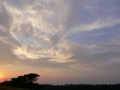 himlen over rørbæk 3