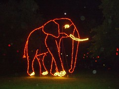 Lichterfest 2006 Elefant