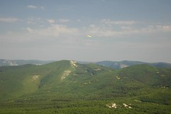 11 - The Last Frisbee Flight