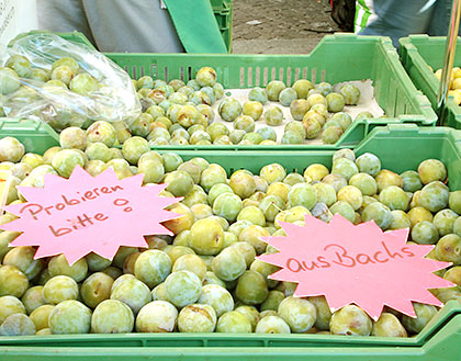 Reine-claude (greengage plums)