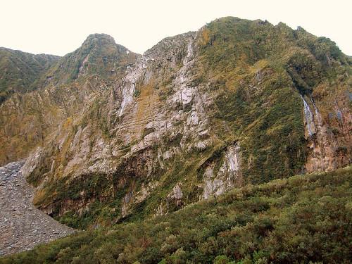 Fox Glacier前的河谷山壁