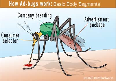 Ad-bug2