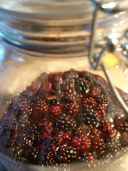 blackberry acid, stage one