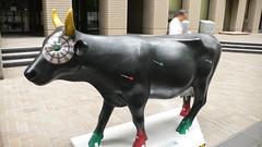 Cow #44