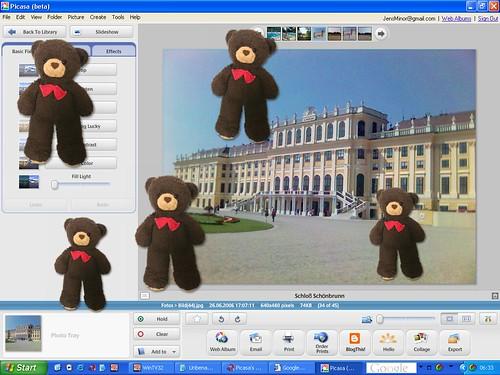 Picasa Teddys