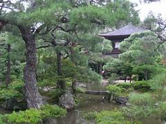 0887 Silver Pavilion garden