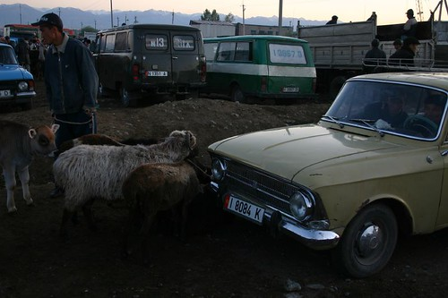 Early morning at the animal market in Karakol, Kyrgyzstan.