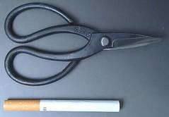 mini-clippers