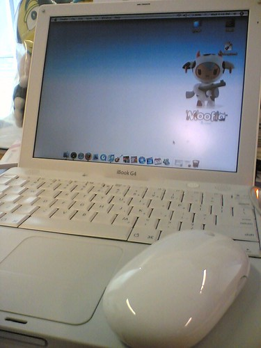 ibook wif bluetooth mighty mouse