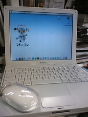 ibook with mac mouse
