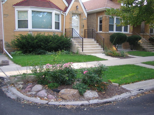 Front yard before transformation