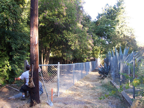 back_fence-new-rear.jpg