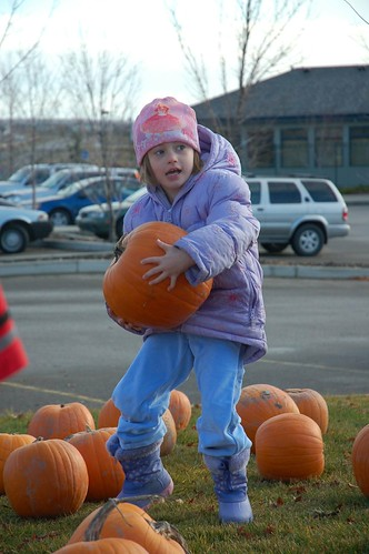 Lifting the Pumpkin
