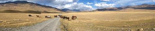 On the way to Naryn, Kyrgyzstan