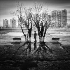 _-_Y_i_Y_-_ photo by Amateur.Qin(秦)