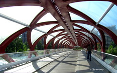 Calgary's Peace Bridge photo by altamons
