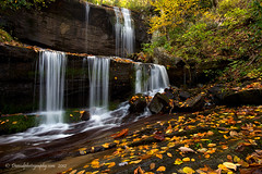 FALLs photo by Dwood Photography