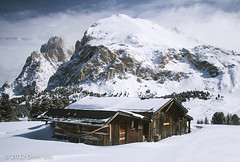 Old hut coverted in snow in the Italian alps photo by onnobos