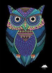 Michael the Magical Owl photo by Mulga The Artist