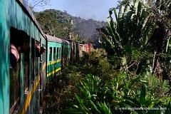 Madagascar - Fianarantsoa-Côte Est railway (FCE) photo by My Planet Experience