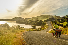 Cycling near Curio bay, New Zealand photo by worldbiking.info