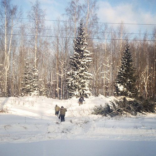 バイカル・アムール鉄道 - Baikal–Amur Mainline