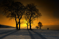 Winter Glow photo by Robert,s