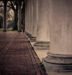 Bricked photo by Stinja1