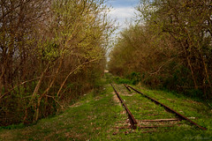 Forgotten Rails Revisited photo by rob stalnaker