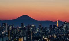 A Tokyo Sunset photo by lestaylorphoto