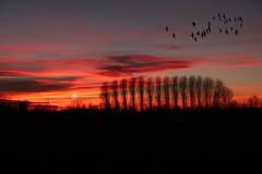 Il tramonto è una rappresentazione mentale photo by giovanni_novara