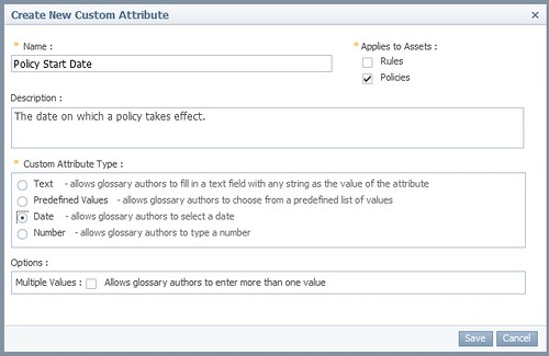 Business Glossary 9.1 Policy Date Attribute