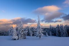 Snow landscape photo by LUCA DGK