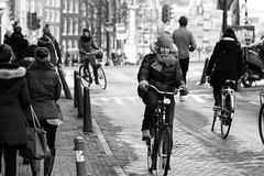 Dutch Talent photo by Ray Zandvoort!