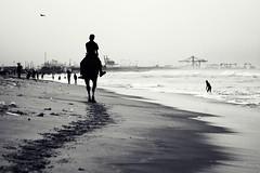 Follow Me | Chennai Marina Beach photo by VinothChandar