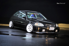 Harold s Black ek hb photo by ino.pascual