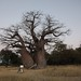 Namibía