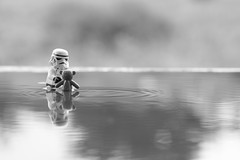 Teddys summer bath photo by Kalexanderson