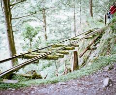 早期損壞的太平山磞磞車軌道 photo by Allan_Lin